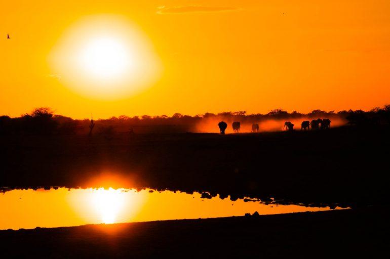 sundown at the waterhole